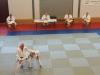 2016-06-11-examen-5e-dan-wim-lindemans-kata-09