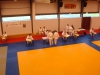 2016-06-11-examen-5e-dan-wim-lindemans-nage-en-ne-waza-01