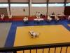 2016-06-11-examen-5e-dan-wim-lindemans-nage-en-ne-waza-08